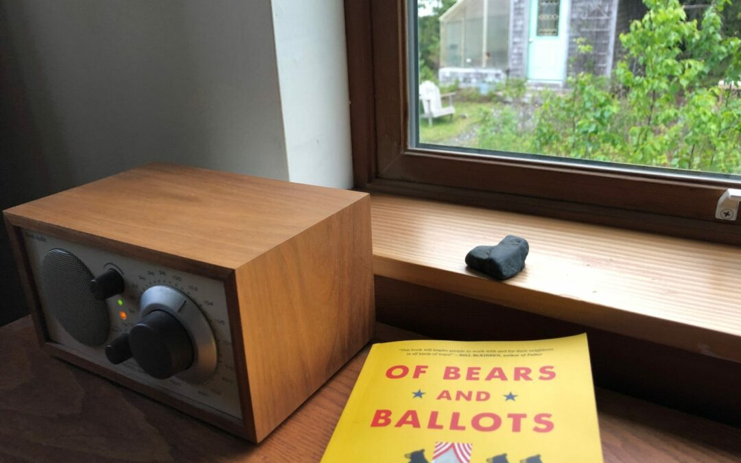 Of Bears and Ballots is Coming Soon